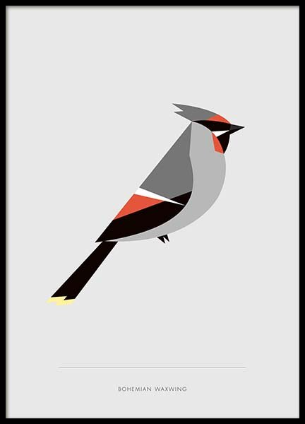 Bohemian Waxwing Poster i gruppen Posters  / Djur hos Desenio AB (10017)