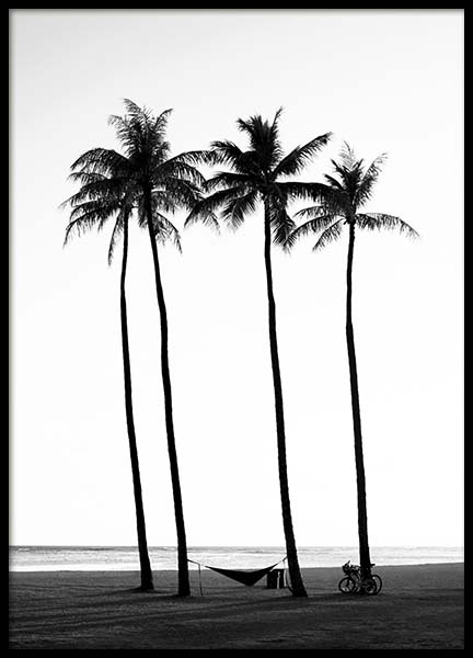 Palm Trees On Beach Poster