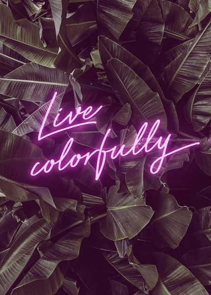 Live Colorfully Neon Poster i gruppen Posters  / Texttavlor hos Desenio AB (10385)