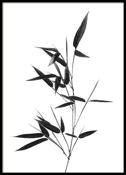 Bamboo Twig Poster i gruppen Posters  / Storlekar / 50x70cm hos Desenio AB (10390)