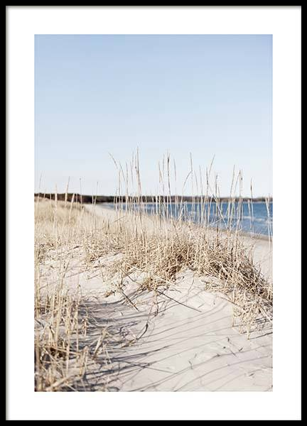Grass by Sea Poster i gruppen Posters  / Storlekar / 50x70cm hos Desenio AB (10478)