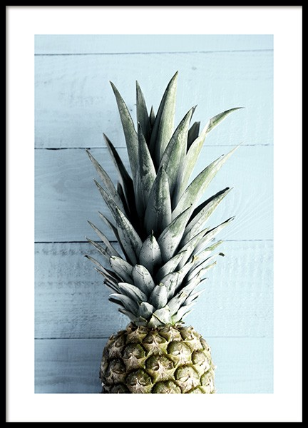 Pineapple Top Poster