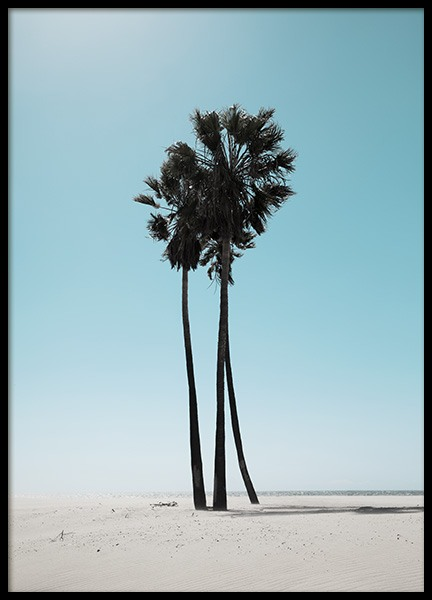 LA Beach Palms Poster i gruppen Studio Collections / Studio Coast to Coast / Los Angeles hos Desenio AB (10784)