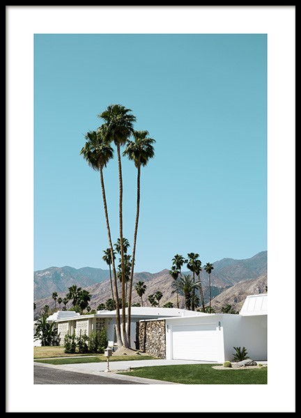Street of Palm Springs Poster i gruppen Studio / Coast to coast / Studio Palm Springs hos Desenio AB (10790)