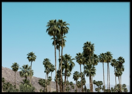 Palm Springs View Poster i gruppen Studio Collections / Studio Coast to Coast / Palm Springs hos Desenio AB (10797)