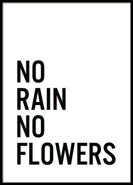 No Flowers Poster