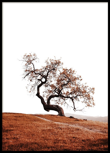 Tree on Hill Poster