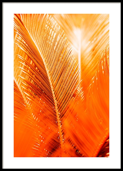 Orange and Gold Palm Poster