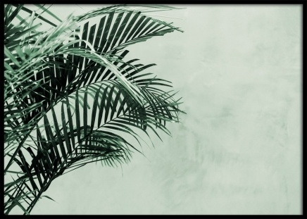 Palm Tree Wall Poster