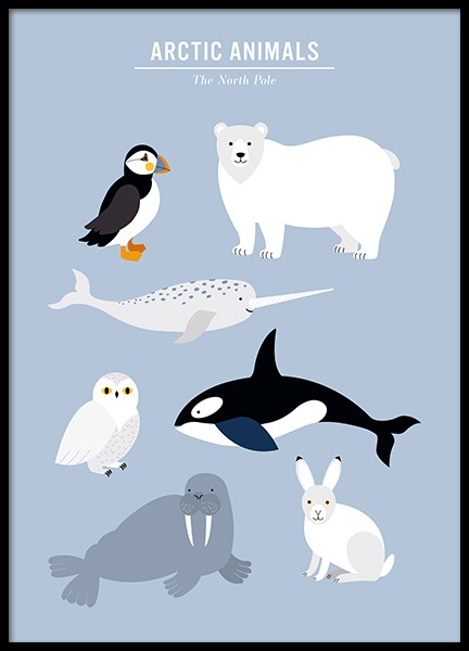 Arctic Animals Poster i gruppen Posters  / Barntavlor hos Desenio AB (13316)