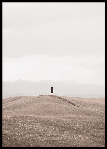 Lonely in Tuscany Poster