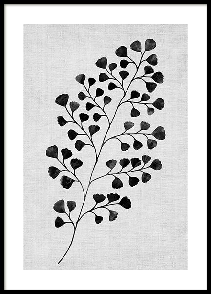 Monochrome Fern No1 Poster