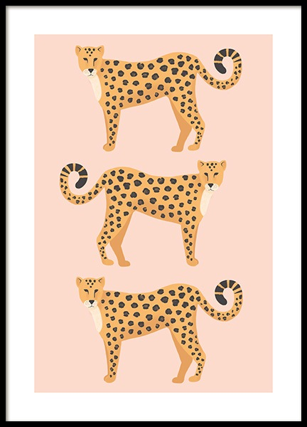 Three Leopards Poster i gruppen Posters  / Djur hos Desenio AB (13781)