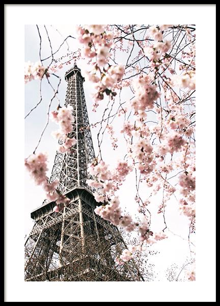 Blooming Paris Poster