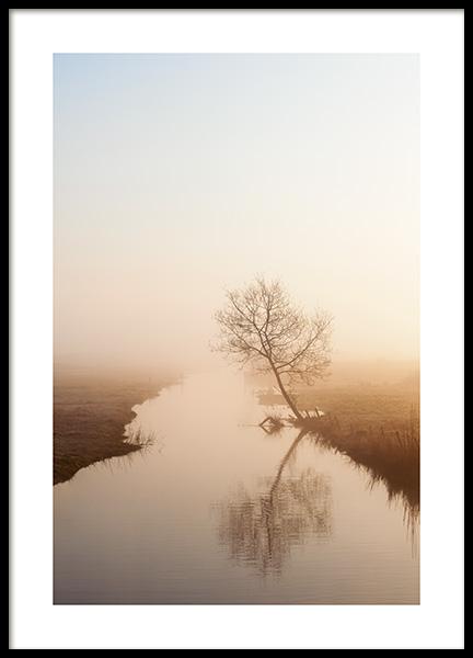 Misty Morning Light Poster