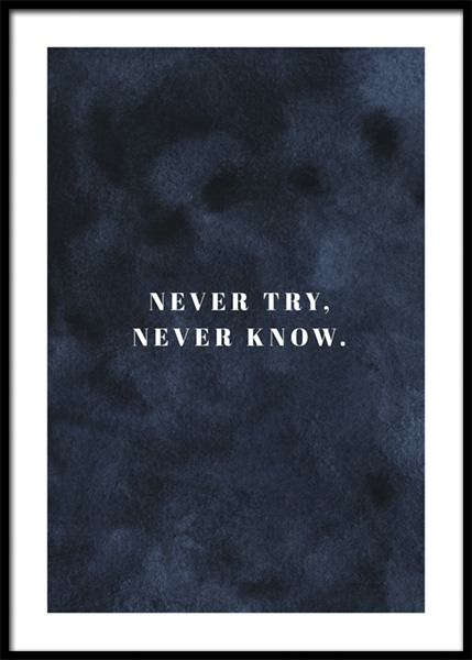 Never Try Never Know Poster