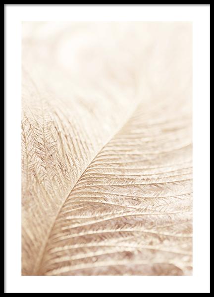 Leaf Close Up Poster