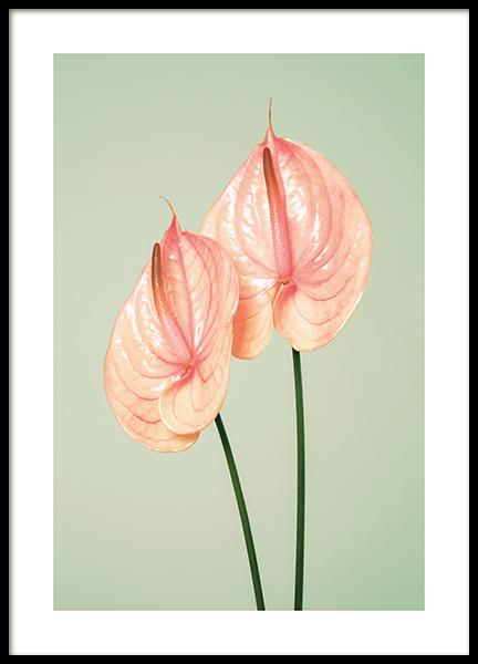 Flamingo Flowers Poster