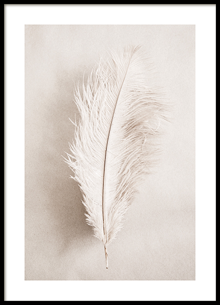 As a Feather Poster
