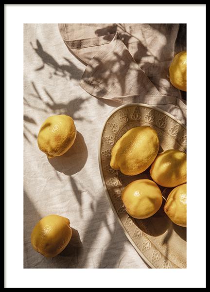 Lemons In Sunlight Poster