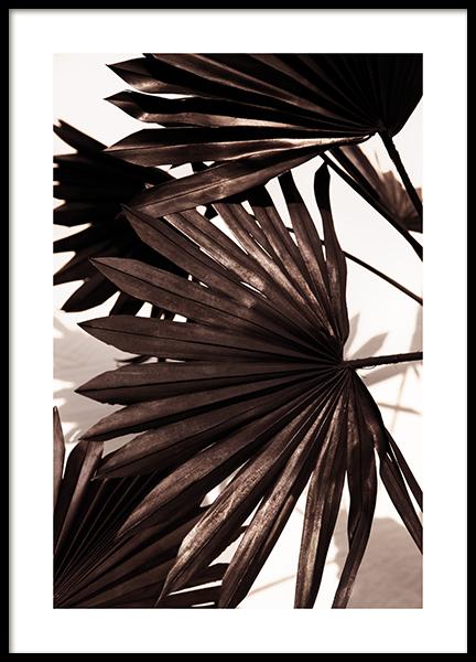 Black Palm Poster