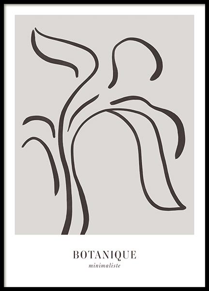 Botanique Minimaliste Poster