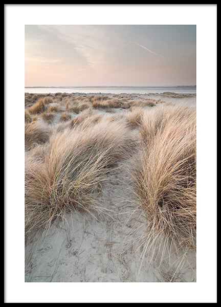 Calm Sand Dunes Poster