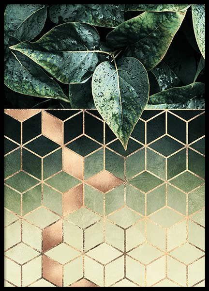 Leaves and cubes Poster i gruppen Posters  / Storlekar / 50x70cm hos Desenio AB (2813)