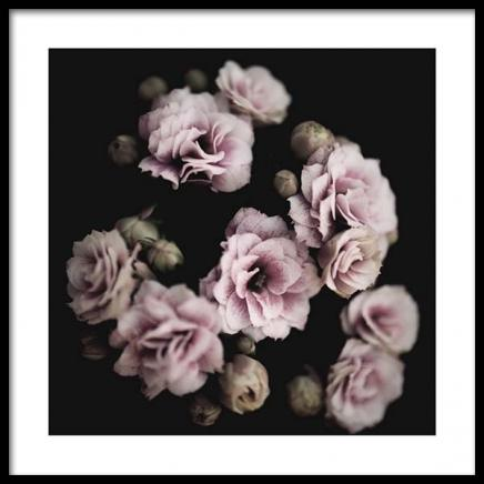 Pastel Roses Poster