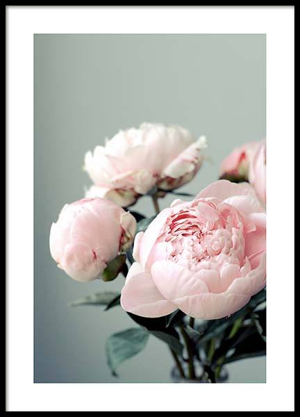 Pink Peonies On Green Poster i gruppen Posters  / Storlekar / 50x70cm hos Desenio AB (3268)