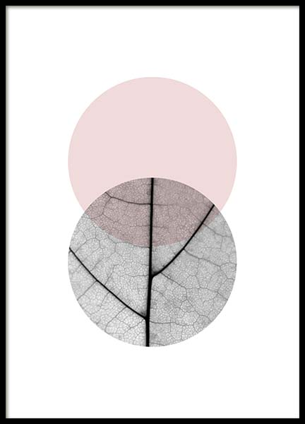 Circle Collage Pink No 2 Poster i gruppen Posters  / Storlekar / 50x70cm hos Desenio AB (3704)