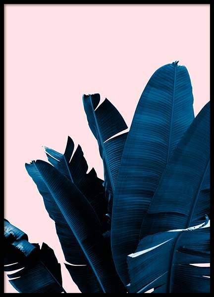 Blue Leaves On Pink No4 Poster i gruppen Posters  / Botaniska hos Desenio AB (3797)