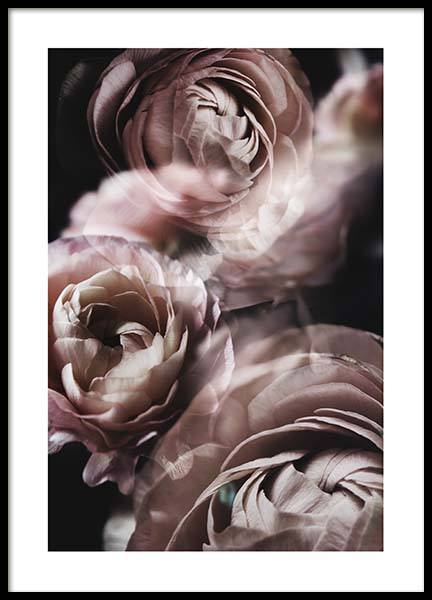 Fairy Tale Flower No2 Poster