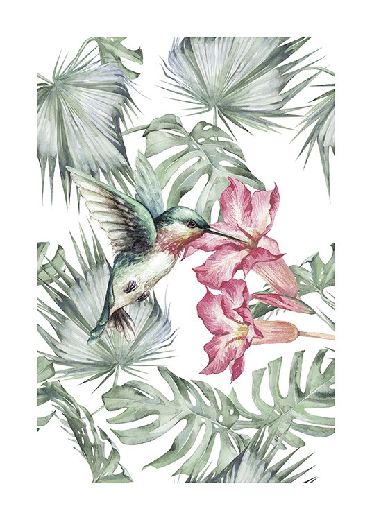 Tropical Bird No1 Poster / Djur hos Desenio AB (10648)