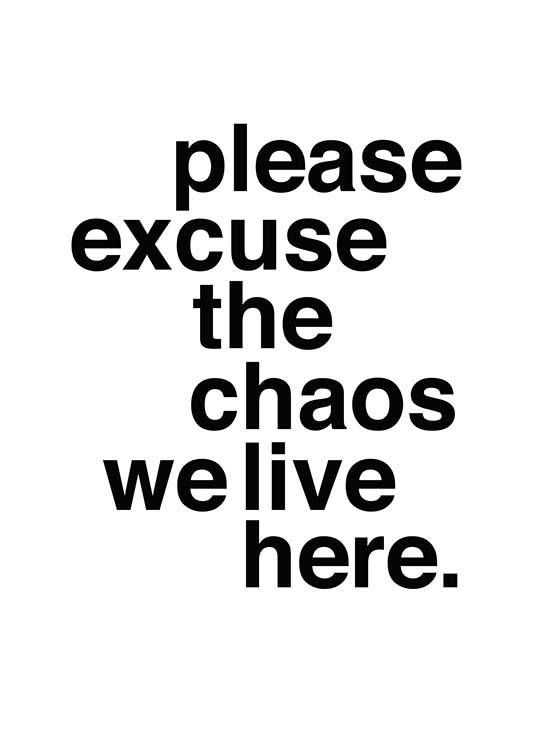 Please Excuse The Chaos Poster / Texttavlor hos Desenio AB (2479)
