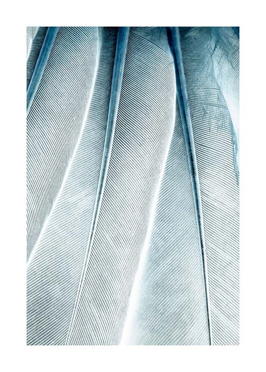 Feathers Close Up Poster / Fotokonst hos Desenio AB (3539)