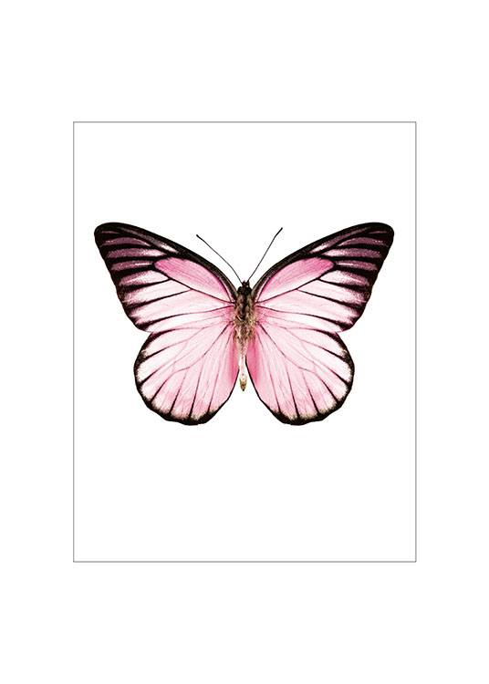 Pink Butterfly Small Poster  / Djur hos Desenio AB (7431)