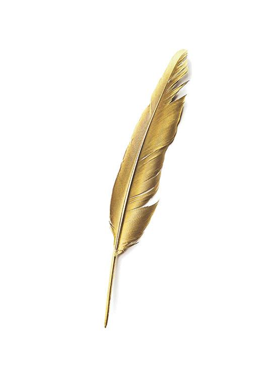 Gold Feather Poster / Texttavlor hos Desenio AB (7605)
