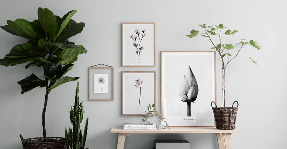 posters-botanical