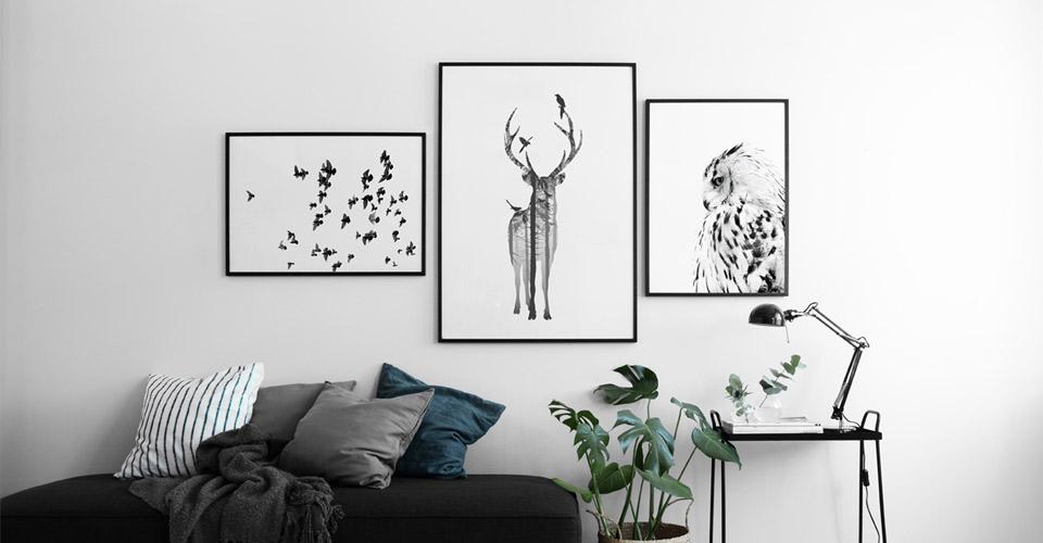 Mooie Posters Kopen : Dieren posters posters met vlinders en libellen desenio