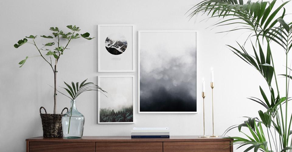 Mooie Posters Kopen : Posters met natuur motieven fotografieën gedrukt op posters